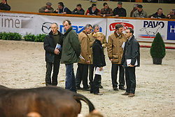 Jury : Boudewijn Schepers, Leon Floren, Jean Vilain, Stefaan Desmedt, Inge Meurrens, Stefan Kelchtermans<br /> BWP Hengstenkeuring Moorsele 2009<br /> Photo © Hippo Foto