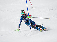 Eastern Cup Slalom at Waterville March 23, 2013.  Karen Bobotas Photographer