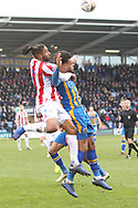 Stoke City defender Ashley Williams (5) on loan from Everton and 28 Josh Laurent for Shrewsbury Town during the The FA Cup 3rd round match between Shrewsbury Town and Stoke City at Greenhous Meadow, Shrewsbury, England on 5 January 2019.