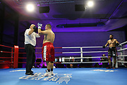 Boxen: Giants Professional Boxing Serie, Hamburg, 07.11.2020<br /> Schwergewicht: Felix Langenberg (GER) - Erik Wenzek (GER)<br /> © Torsten Helmke