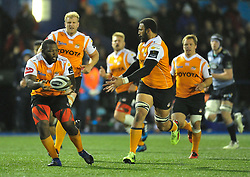 Cheetahs' Ox Nche passes to Cheetahs' Uzair Cassiem<br /> <br /> Photographer Mike Jones/Replay Images<br /> <br /> Guinness PRO14 Round 14 - Cardiff Blues v Cheetahs - Saturday 10th February 2018 - Cardiff Arms Park - Cardiff<br /> <br /> World Copyright © Replay Images . All rights reserved. info@replayimages.co.uk - http://replayimages.co.uk