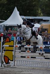 Maarse Dave (NED) - Ach Jee'n Liefhebber<br /> KWPN Paardendagen - Ermelo 2012<br /> © Dirk Caremans
