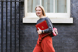 © Licensed to London News Pictures. 19/02/2019. London, UK. Liz Truss - Chief Secretary to the Treasury arrives in Downing Street for the weekly Cabinet meeting. Photo credit: Dinendra Haria/LNP