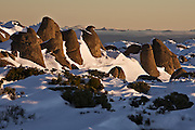 Dolerite Rock, Mount Wellington Forest Park - Tasmania