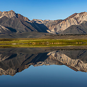 The Sherwin Mountains in the Eastern Sierras glow in the warm reflection of a small lake.