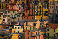 Aerial view of colorful houses in Manarola, Italy