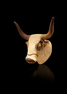 Minoan  bull's head rhython libation vessel, Machlos 1500-1450 BC; Heraklion Archaeological  Museum, black background. .<br /> <br /> If you prefer to buy from our ALAMY PHOTO LIBRARY  Collection visit : https://www.alamy.com/portfolio/paul-williams-funkystock/minoan-art-artefacts.html . Type -   Heraklion   - into the LOWER SEARCH WITHIN GALLERY box. Refine search by adding background colour, place, museum etc<br /> <br /> Visit our MINOAN ART PHOTO COLLECTIONS for more photos to download  as wall art prints https://funkystock.photoshelter.com/gallery-collection/Ancient-Minoans-Art-Artefacts-Antiquities-Historic-Places-Pictures-Images-of/C0000ricT2SU_M9w
