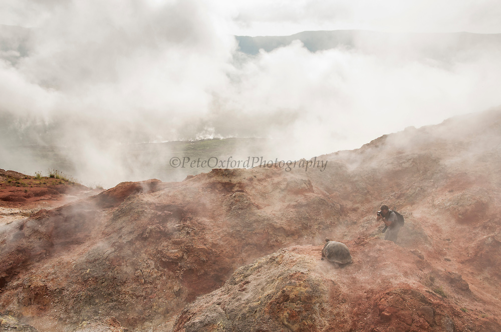 Pete Oxford<br /> Alcedo Volcano<br /> Galapagos<br /> Ecuador, South America