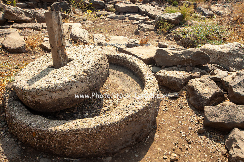 Millstone in Gamla ancient Jewish city on the Golan Heights.