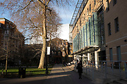 Kings College London campus at Guy's Hospital in Southwark, London, UK. Guy's, King's and St Thomas' School of Medicine (abbreviated: GKT) is the medical school of King's College London and one of the United Hospitals.