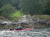 Kayaker and goats - kajakkpadler og geiter
