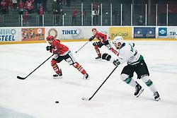 KOREN Gal during Alps League Ice Hockey match between HK SZ Olimpija and HDD SIJ Jesenice, on February 12, 2019 in Ice Arena Podmezakla, Jesenice, Slovenia. Photo by Peter Podobnik / Sportida