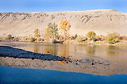 Autumn Reflections in Yakima River WA.