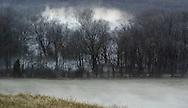 Fog forms in a field near the Moodna Creek in Salisbury Mills on Friday, Jan. 11, 2008.
