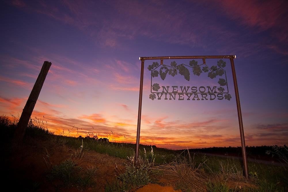 Sunrise at Newsom Vineyards in Yoakum County near Plains, Texas--self assigned