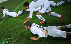 Bostjan Cesar (5) after the fourth round qualification game of 2010 FIFA WORLD CUP SOUTH AFRICA in Group 3 between Slovenia and Northern Ireland at Stadion Ljudski vrt, on October 11, 2008, in Maribor, Slovenia.  (Photo by Vid Ponikvar / Sportal Images)