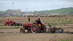 © Licensed to London News Pictures. <br /> 30/11/2014. <br /> <br /> Boulby, United Kingdom<br /> <br /> Ian Myers from York checks the straightness and depth of his furrows as he drives a 1958 McCormick International tractor during a ploughing match that takes place each year on fields next to the picturesque Yorkshire coastline near Staithes. Farmers attend each year to demonstrate their ploughing skills and to help raise money for charity with proceeds from this year going to Charlie Brown Cancer Care in Newcastle.<br /> <br /> <br /> Photo credit : Ian Forsyth/LNP