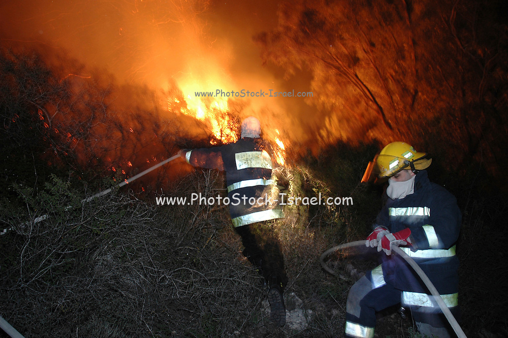 Israel, Haifa Carmel Mountain Forest, fire fighters fighting the flames