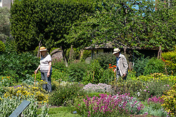 © Licensed to London News Pictures. Visitors enjoy the Chelsea Physic Garden during the hot midday sun as temperature rise to 26C.  Photo credit: London News Pictures