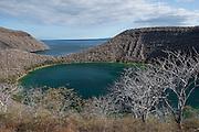 Galapagos Legend Ship at Tagus Cove<br /> Galapagos Legend Ship<br /> Tagus Cove<br /> Isabela<br /> Galapagos<br /> Ecuador, South America