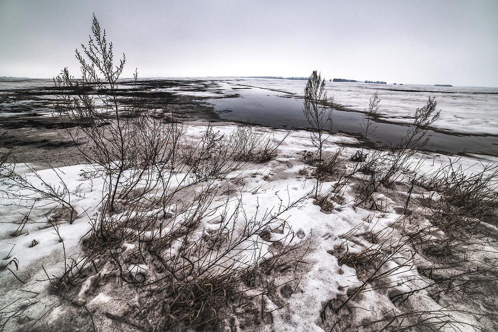 Black soils of Central Ukraine