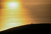 Couple Watching Sunset, Marin County, California (NC)
