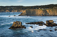 Mendocino Headlands State Park, California