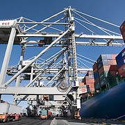 Nederland Zuid-Holland Rotterdam  27-08-2009 20090827 Foto: David Rozing .Serie over logistieke sector..ECT Delta terminal in de haven van Rotterdam. Robotgestuurde wagens vervoeren de containers op de terminal. Onbemande wagens in de rij bij de hijskranen, deze tillen de containers op het zeeschip. Reusachtige zeeschepen aan de kade om gelost en geladen te worden. .ECT,European Container Terminals, at the Port of Rotterdam. Europe's biggest and most advanced container terminal operator, handling close to three- quarters of all containers passing through the Port of Rotterdam. ECT is a member of the Hutchison Port Holdings group (HPH), the world biggest container stevedore with terminals on every Continent. At the ECT Delta Terminal unmanned, automated guided vehicles  so called AGVs  transport the containers between ship and stack. In the stack, unmanned automated stacking cranes ( ASCs ) ensure that the containers are always stacked in the correct place. A crane loads shipping containers to the cargo ship. Terminal operations are highly automated for discharging and loading large volumes..Holland, The Netherlands, dutch, Pays Bas, Europe , transporteurs, transportmiddel, transportwerktuigen, truck, trucks, turnaround tijd, tweede Maasvlakte, uitbreiding, uitvoer, vaart, vehicle, verplaatsen, vervoer, vervoer per schip, vervoerder, Vervoerders, vervoeren, voertuig, voertuigen, vrachtschepen, vrachtschip, wagen, wagens, wagon, wagons, water, waterhuishouding, welvaart, wereldhandel, werk, werkzaamheden, zeehaven, zeehavens, zeeschepen, zeeschip, zeevaart.Foto: David Rozing