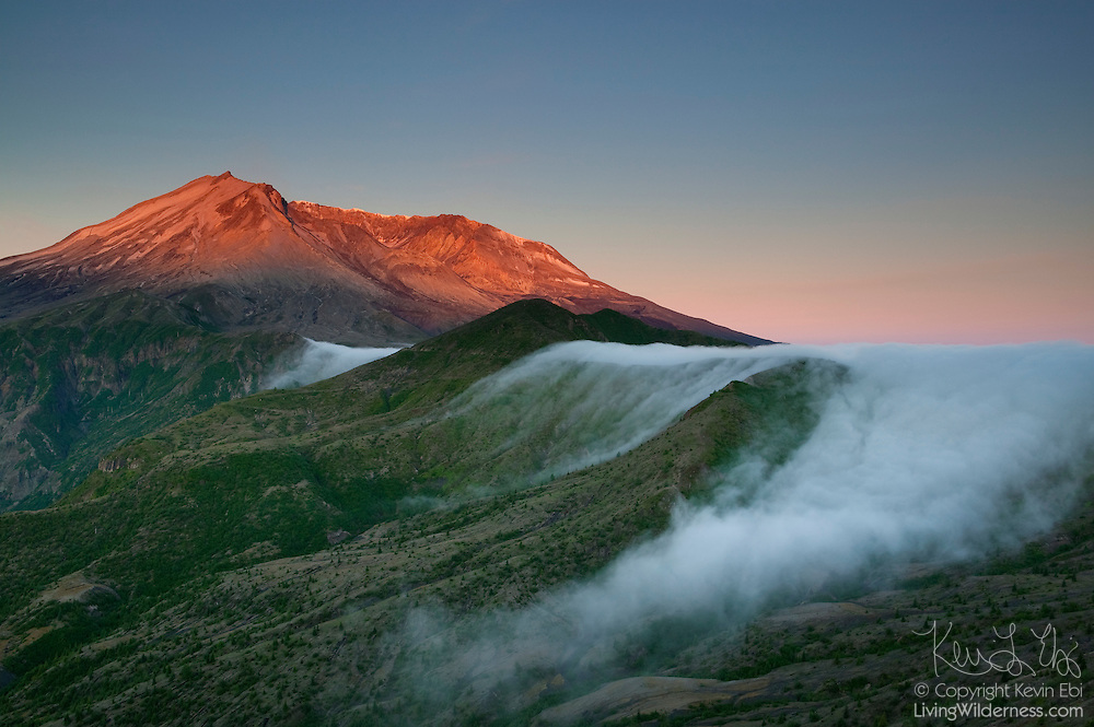 Thich fog bunches up and spills over a hillside above Smith Creek in Mount St. Helens National Monument, Washington.