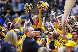 Jan 19, 2019; Morgantown, WV, USA; West Virginia Mountaineers cheerleaders and students cheer during the first half against the Kansas Jayhawks at WVU Coliseum. Mandatory Credit: Ben Queen-USA TODAY Sports