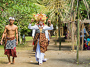 22 JULY 2016 - TENGANAN DUAH TUKAD, BALI, INDONESIA: Men walk to the pandanus fights in the Tenganan Duah Tukad village on Bali. The ritual Pandanus fights are dedicated to Hindu Lord Indra. Men engage in ritual combat with spiky pandanus leaves and rattan shields. They usually end up leaving bloody scratches on the combatants' backs. The young girls from the community wear their best outfits to watch the fights. The fights have been traced to traditional Balinese beliefs from the 14th century CE. The fights are annual events in the Balinese year, which is 210 days long, or about every seven months in the Gregorian calendar.    PHOTO BY JACK KURTZ