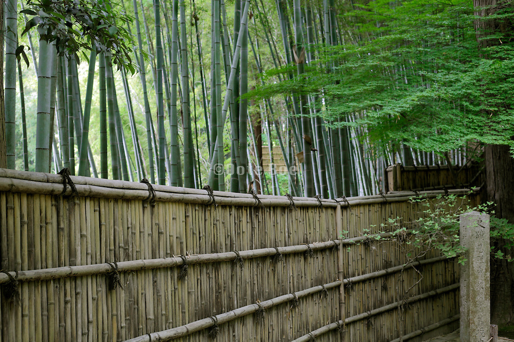 fence separating inside and outside of a Japanese garden
