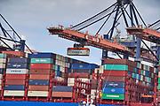 Nederland, the Netherlands, Rotterdam, 3-9-2019 Containeroverslag in de rotterdamse haven op de 2e maasvlakte, bij APM en euromax terminal, terminals. Foto: Flip Franssen