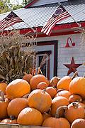 Display of pumpkins in front of store.