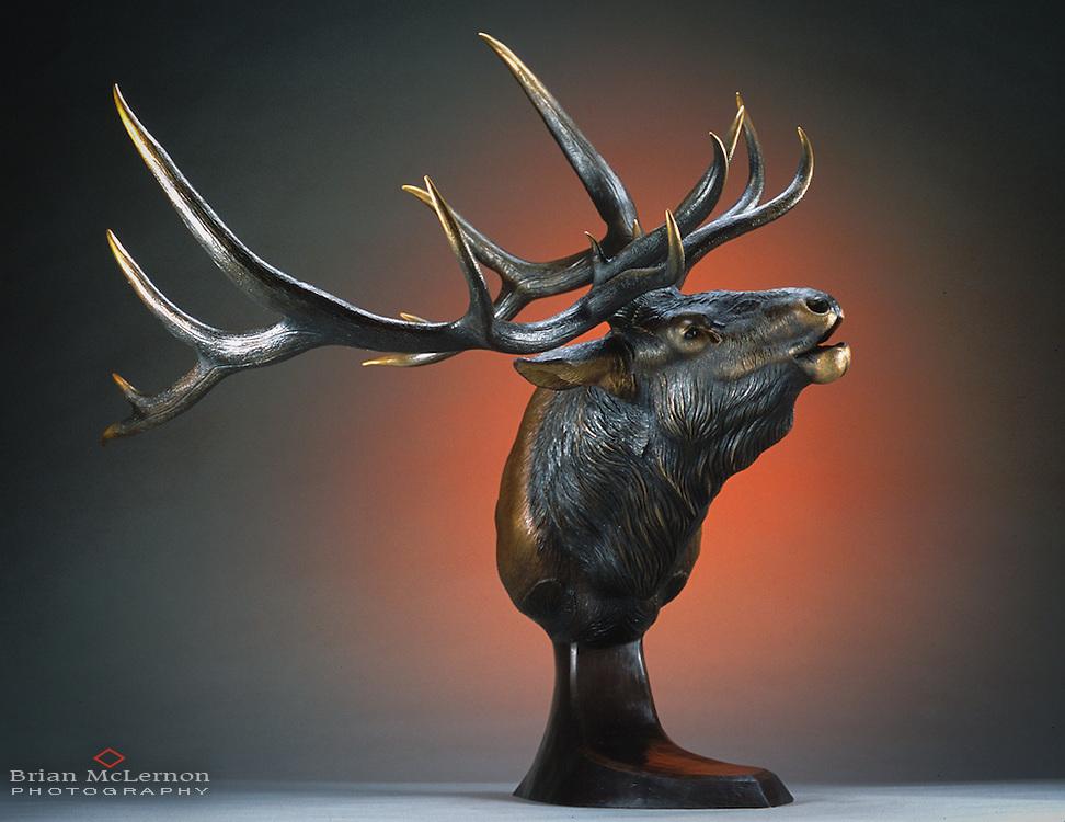 Bronze Sculpture by Ryan Wilhite