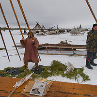 North of the Arctic Circle in Russia, 70+ year old Rema Chuprova and one of her sons, members of the last nomadic Komi reindeer herding clan, erect the poles of their reindeer-skin chum (tepee).  The boards and spruce boughs help to keep the floor warm.