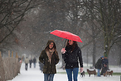 © licensed to London News Pictures. London, UK 18/01/2013. People walking in St.James's Park as snow hits London on Friday 18, January 2013. Photo credit: Tolga Akmen/LNP