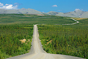 Dempster Highway and the Richardson Mountains  (KM 347 - 405) south of the Arctic Circle<br /> Dempster Highway<br /> Yukon<br /> Canada