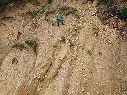 """Arnaldo Hernández, COCASJOL, El Ocotillal, Colinas, Santa Barbara, Honduras. """"Quite a few farms have been affected by the hurricanes. There's not even a way in to the farms, the roads are ruined. And fungal diseases, ojo de gallo, leaf rust, we've got them. There's been no support from the government, but the coop has given some people some fertilizer because the soil is washed out, to help restore the coffee trees."""""""