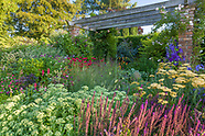 Abbeywood Gardens - July
