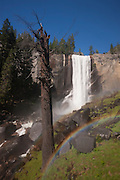 A bright double rainbow forms near the base of Vernal Fall in Yosemite National Park, California. At Vernal Fall, the Merced River drops 317 feet (97 meters). The waterfall is located along the Mist Trail, named for the massive spray generated by Vernal Fall and Nevada Fall, located upstream.
