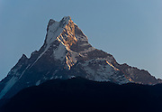 Machhapuchhre (or Machhapuchhare), the Fish Tail Mountain (22,943 feet / 6997 meters elevation) is a sacred peak, illegal to climb, in the Annapurna mountains (part of the Himalaya range), seen from Ghandruk, in Nepal.