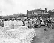 Y-540612-007. Photographers and the press surround the Royal Court before the parade in Multnomah Stadium. Rose Festival, Grand Floral Parade. June 12, 1954.