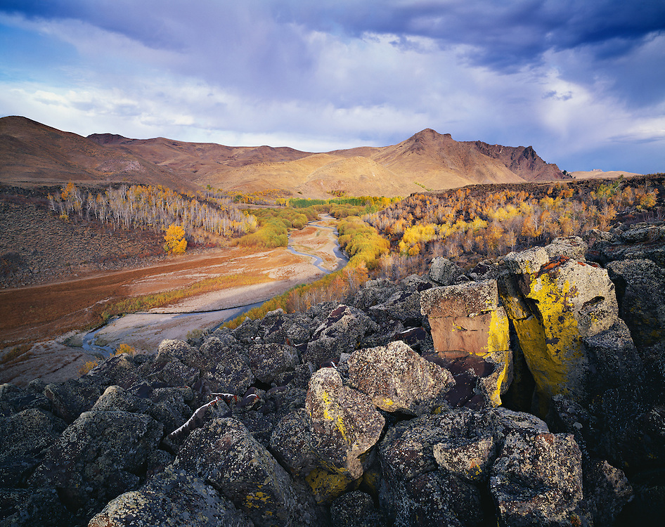 Limited Editions of 30<br /> Autumn color is replicated in lichen growth on volcanic rock surrounding the Little Wood Reservoir near Carey in South Eastern Idaho at dawn.