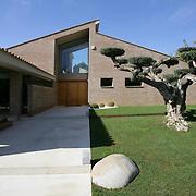 Modern Garden 449