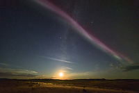 """It was nearly 11pm in southern Saskatchewan. I had just watched a bright auroral substorm send colorful arcs high into the northern sky, but it was starting to fade. Then I turned around, looking south, and this is what I saw. A bright pinkish strip of light stretched from east to west, while the crescent moon hung low on the horizon. It's one of the most unusual things I've ever seen in the night sky. This strange type of aurora is called Steve. The name started as a joke, but it stuck.  Steve was first captured last year by a group of aurora photographers in Alberta. After ESA flew a satellite through it earlier this year, it was discovered that it's comprised of very hot (10,800°F) ionized gases moving along at 4 miles per second. This ribbon of light is 16 miles wide and thousands of miles long. I watched as Steve started overhead nearly paralleling the US-Canada border, before slowly moving south. It turned into a green """"picket fence"""" pattern before fading away. It was awesome to see such a mysterious phenomena which is still being studied by scientists."""