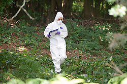©Licensed to London News Pictures 20/08/2019.<br /> Tunbridge Wells ,UK. Forensics on scene. Police searching for missing 30 year old Sabrina Goacher in Kent have found a body in woodland off Church Road, Tunbridge Wells. Forensic teams are investigating with a police cordon in place. The scene is near to Tunbridge Wells town centre. Sabrina had been reported missing on Sunday.  Photo credit: Grant Falvey/LNP