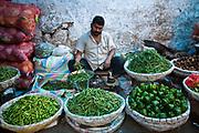A vegetable seller in the market in Mehrauli, Delhi, India