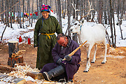 A Tsaatan shaman carving a deer horn while his wife and reindeer look on, Khovsgol Province, Mongolia