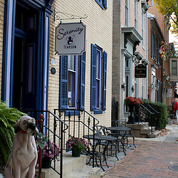 Frederick, Maryland - On quaint Patrick Street, lined with tearooms, restaurants, and antique shops, among other businesses, in downtown Frederick..Photo by Susana Raab